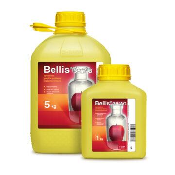 Беллис