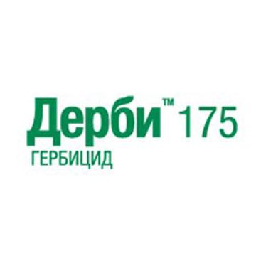 Дерби 175