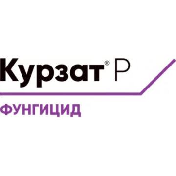 Курзат Р