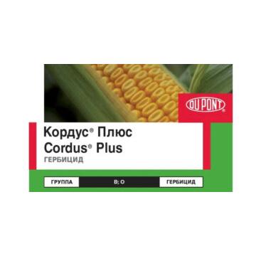 Кордус Плюс