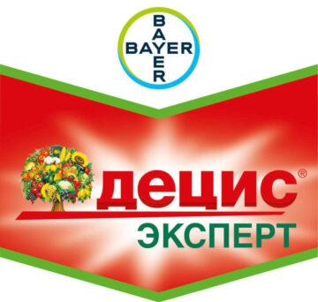 Децис Эксперт